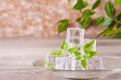 Smältande iskuber och mintkaramellsidor på ett tefat Royaltyfria Foton