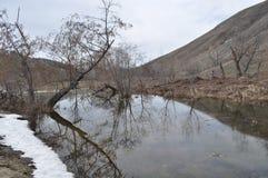 Smältande snö på flodbanken Arkivbilder