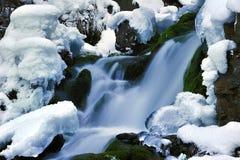 smältande snow Arkivbild