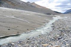 smältning för athabascakantglaciär Royaltyfri Fotografi