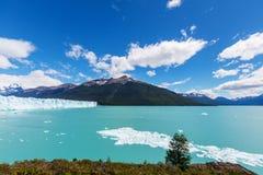 Smältningsglaciär i Argentina Arkivfoton
