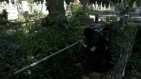 Smärtad begravnings- kvinnaänka som förlägger kronan på gammal grav med statyn och gråt ner henne knä stock video