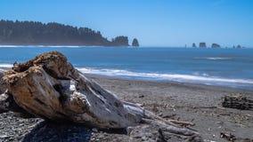 Små öar av NW-kusten av Förenta staterna royaltyfri foto