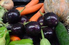 Små aubergine och morötter Royaltyfri Bild