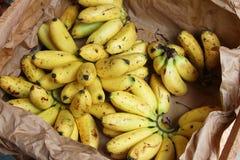 Små bananer i en spjällåda Fotografering för Bildbyråer