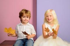 Små barn i hösten som spelar med sidor på höstfärgbakgrund Barn annonserar din produkt och tjänst royaltyfria bilder