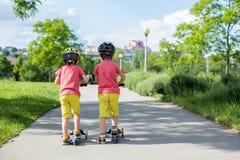 Små barn, pojkebröder som rider sparkcyklar i sommar, parkerar Royaltyfria Foton