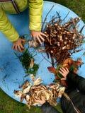 Små barn som spelar, expolring och arbeta i trädgården i trädgården med jord, sidor, muttrar, pinnar, växter, frö under en skola arkivbild