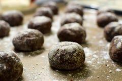 Små bruna chokladpepparkakakakor lägger på en bakplåt som strilas med pudrat socker royaltyfria foton