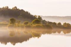 Små buskar och trädreflexioner på yttersidan av sommarsjön royaltyfri fotografi