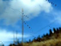 Små droppar av regn på exponeringsglas Arkivbilder