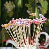 Små fågelstatyetter som dekorerar houseplants Arkivbild