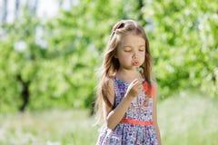 Små för vit flicka för maskrosfält behandla som ett barn härliga lyckliga gröna maskrosor för änggulingblommor som naturen parker Royaltyfri Bild