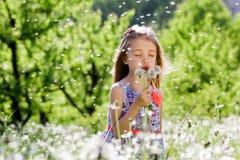 Små för vit flicka för maskrosfält behandla som ett barn härliga lyckliga gröna maskrosor för änggulingblommor som naturen parker Arkivbilder