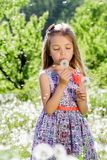 Små för vit flicka för maskrosfält behandla som ett barn härliga lyckliga gröna maskrosor för änggulingblommor som naturen parker Royaltyfria Foton