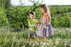 Små för vit pojke för flicka för maskrosfält behandla som ett barn lyckliga gröna maskrosor för änggulingblommor som naturen park Royaltyfria Foton