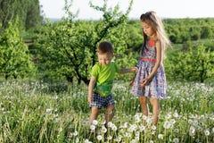 Små för vit pojke för flicka för maskrosfält behandla som ett barn lyckliga gröna maskrosor för änggulingblommor som naturen park Royaltyfria Bilder