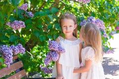 Små förtjusande flickor i frodigt parkerar i sommar royaltyfri fotografi