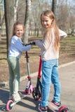 Små förtjusande flickor som rider på sparkcyklar parkerar in, utomhus Royaltyfri Fotografi