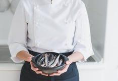 Små fiskar i keramisk bunke över händer för kock` s royaltyfri bild