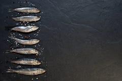 Små fiskar med salt och peppar på tabellen Arkivbild