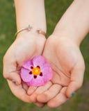 Små flickor räcker att rymma en rosa blomma försiktigt i hennes händer som bär ett argt armband Arkivfoto