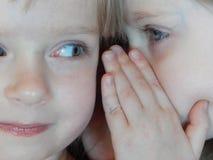 Små flickor som berättar hemligheter som viskar tvilling- systrar royaltyfri fotografi