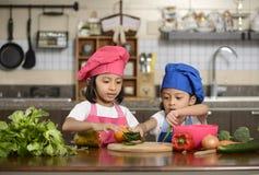 Små flickor som förbereder sund mat Fotografering för Bildbyråer