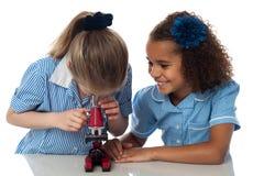 Små flickor som ser in i mikroskopet arkivfoto