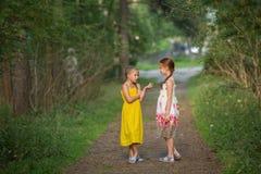 Små flickor som talar spännande att stå i den gröna gränden royaltyfri fotografi