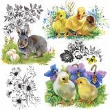 Små fluffiga gulliga vattenfärgankungar, hönor och hare med den sömlösa modellen för ägg på den vita bakgrundsvektorillustratione Royaltyfri Bild
