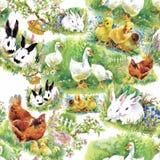 Små fluffiga gulliga vattenfärgankungar, hönor och hare med den sömlösa modellen för ägg på den vita bakgrundsvektorillustratione Royaltyfri Foto