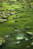 Små forsar och gröna reflexioner med sunstreaks på vattnet Arkivfoton