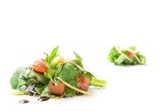 Små högar av rucolasallad med isolerade tomater och parmesan Arkivbilder