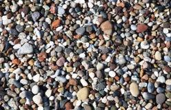 Små havskiselstenar Arkivfoto