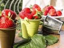 Små hinkar med jordgubbar Royaltyfri Foto