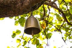 Små klockor på trädet Arkivfoto