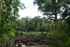 Små kojor som göras av sugrör i den Bali djungeln Indonesien Arkivfoto