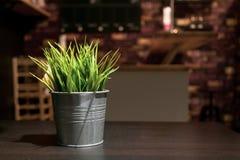 Små konstgjorda gröna växter i zink belägger med metall decorati för blommavas Arkivbilder
