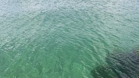 Små krusningar på yttersida av Lake Michigan Illinois stock video