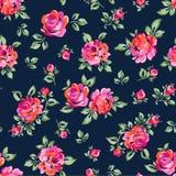 Små målade rosor Arkivfoton