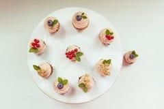 Små muffin med kräm, blåbär, tranbär och vinbär Royaltyfria Foton