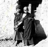 Små munkar Arkivfoto