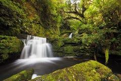 Små nedgångar från Mclean faller nedströms, Catlins, Nya Zeeland Fotografering för Bildbyråer