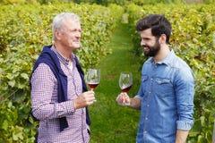 Små och medelstora företag på vingården Royaltyfri Bild
