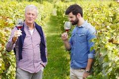 Små och medelstora företag på vingården Royaltyfria Foton