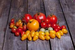 Små och stora tomattomater, rött, gult och grönt Arkivfoto