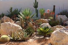 Små palmträd och kakturs för landskapdesign royaltyfri foto