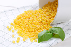 Små pastaskal Arkivfoton