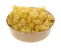 Små pastaskal i bunke Arkivfoto